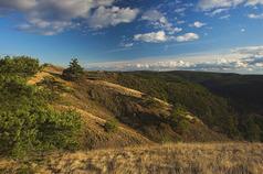 Národní přírodní rezervace Mohelenská hadcová step